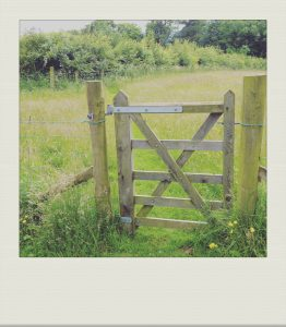 """gate leading to haymeadow"""