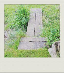 """informal bridge across a stream in country garden"""
