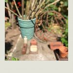 """""""A collection of garden finds in our allotment-style garden."""""""